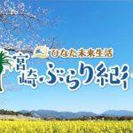 【宮崎ぶらり紀行】桜|菜の花|日本神話|天孫降臨|宮崎県|西都原古墳群|